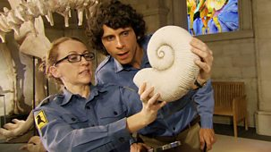 Andy's Dinosaur Adventures - Eustreptospondylus And Ammonite