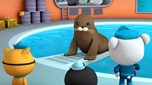 Octonauts - Series 3 - Harbour Seal