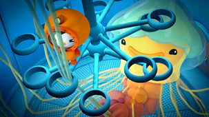 Octonauts - Series 3 - Lion's Mane Jellyfish