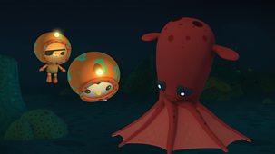 Octonauts - Series 1 - The Vampire Squid