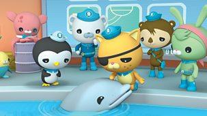 Octonauts - Series 1 - The Baby Dolphin