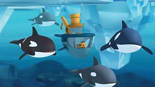 Octonauts - Series 1 - The Arctic Orcas