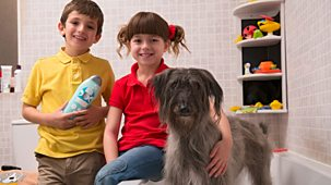 Topsy And Tim - Series 2 - Washing Mossy