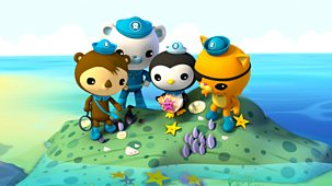 Octonauts - Series 1 - The Lost Sea Star
