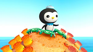 Octonauts - Series 1 - The Enemy Anemones