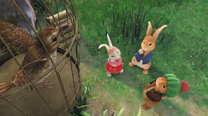 Peter Rabbit - Series 2: 10. The Tale Of The Bird Trap