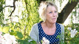 Carol Klein's Plant Odysseys - 1. Roses