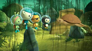 Octonauts - Series 3: 20. Loggerhead Sea Turtle