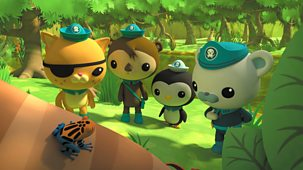 Octonauts - Series 4: 1. Octonauts And The Poison Dart Frogs