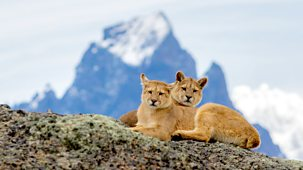 Patagonia: Earth's Secret Paradise - 1. Fire And Ice
