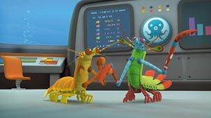 Octonauts - Series 4: 6. Octonauts And The Mantis Shrimp