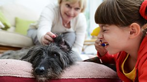 Topsy And Tim - Series 3: 7. Two Dogs