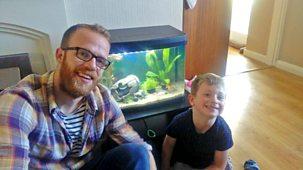 My Pet And Me - Series 2: 11. Goldfish
