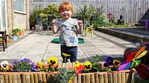 My First - 3. Garden