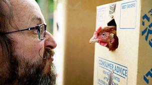 Hairy Bikers - Chicken & Egg - 1. Uk