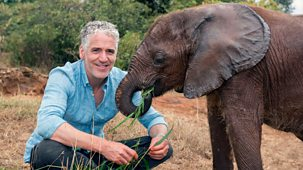 Gordon Buchanan: Elephant Family & Me - Episode 1