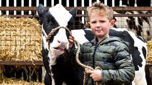 This Farming Life - Series 2: Episode 1