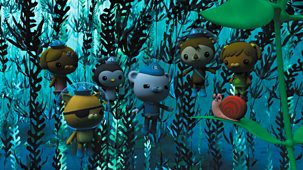 Octonauts - Series 4: 21. Octonauts And The Kelp Monster Mystery