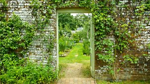 A Year In An English Garden: Flicker & Pulse - Episode 11-04-2021