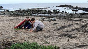 Gudrun: The Viking Princess - The Shore Crab