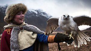 Gudrun: The Viking Princess - The Gyrfalcon