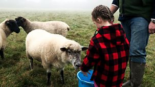 Our Family - Our Family Fun: 19. Ottalie Rounds Up The Sheep