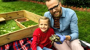 Ferne And Rory's Vet Tales - Series 1: 14. Toni The Tortoise
