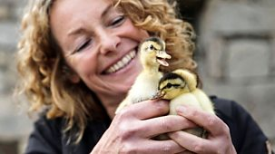 Back To The Land With Kate Humble - Series 2: Episode 1