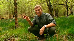 Ray Mears' Bushcraft - Series 2: 5. Four Seasons