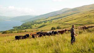 The Farmers' Country Showdown - Series 2 30-minute Versions: 3. Killin