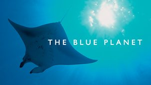 The Blue Planet - 1. Introduction