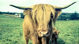 Armchair Britain - Series 1: 3. The Highlands
