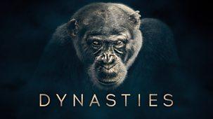 Dynasties - Series 1: 1. Chimpanzee