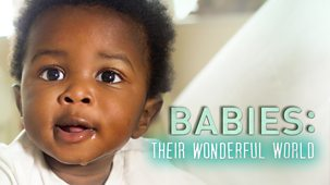 Babies: Their Wonderful World - Series 1: 1. Becoming You
