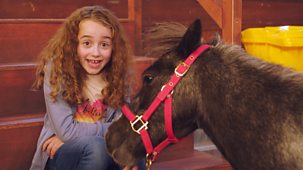 Molly And Mack - Series 1: 7. The Pony Problem