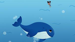 Yakka Dee - Series 2: 3. Whale