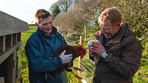Countryfile - Vets
