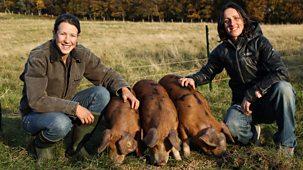 This Farming Life - Series 3: Episode 2