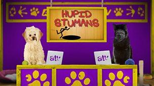 Animal Tv - Series 1: 15. Hupid Stumans