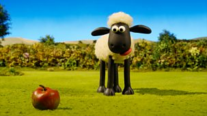 Shaun The Sheep - Series 4: 30. Fruit & Nuts