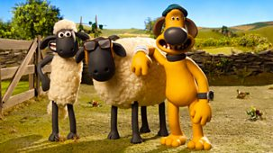 Shaun The Sheep - Series 5: 20. Sheep Farmer
