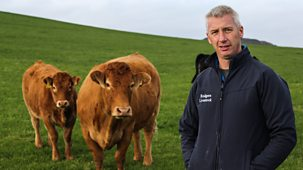 This Farming Life - Series 3: Episode 5