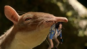 Andy's Prehistoric Adventures - 8. Leptictidium And Fig