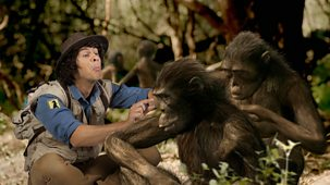 Andy's Prehistoric Adventures - 15. Australopithecus And Hair