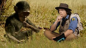 Andy's Prehistoric Adventures - 24. Australopithecus And Tool