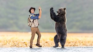 Andy's Safari Adventures - Series 1: 22. Andy And The Grizzly Bear