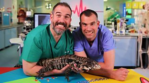 Operation Ouch! - Series 8: 3. There's A Lizard In The Lab