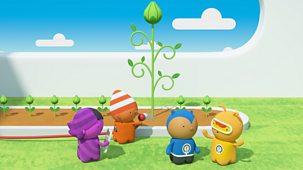 Tinpo - Series 1: 67. Sunflower Beanstalk