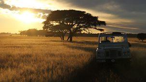 Unlocking Nature's Secrets: The Serengeti Rules - Episode 07-09-2021