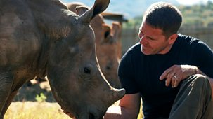 Deadly 60 - Series 4: 1. Rhino Rescue Special